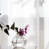 日当たりの良い自然光の入る部屋での診断